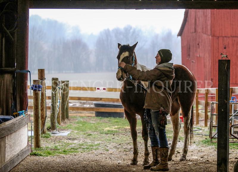 LHF Horse Rides
