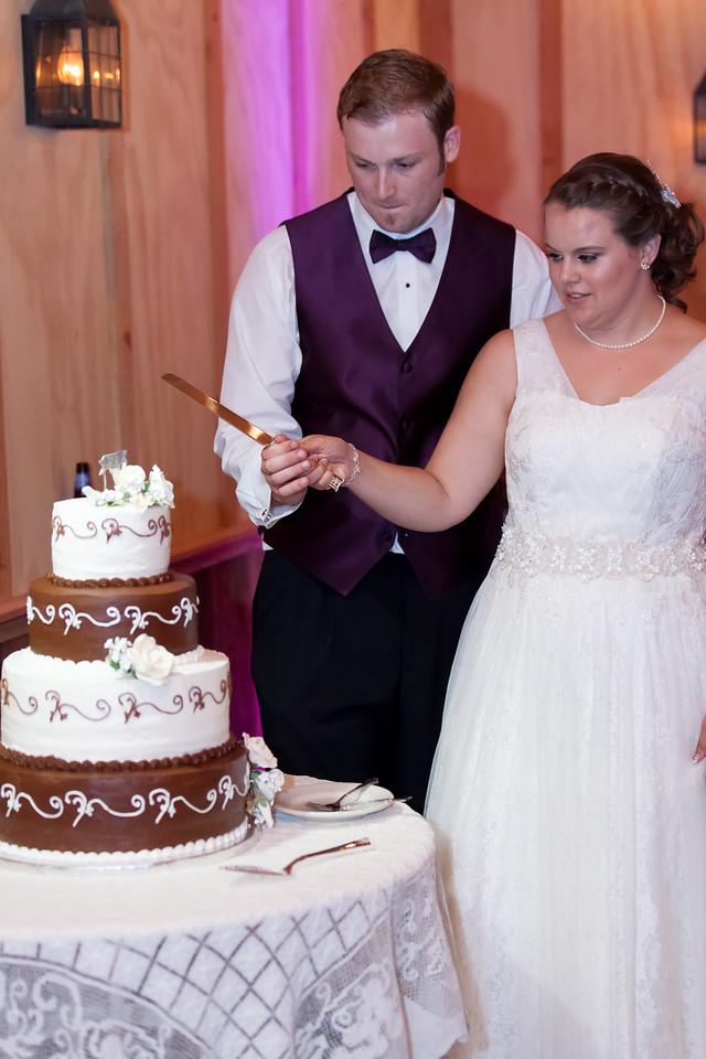 Gretchen and Eric - Radonich Ranch - wedding (691 of 715)