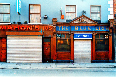 The Blue Lion - 2