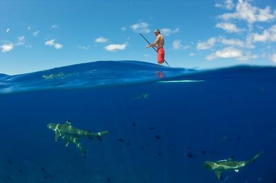 Stephan Lambert - Bora Bora