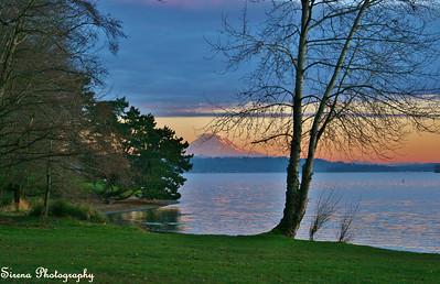 Rainier on Lake Washington