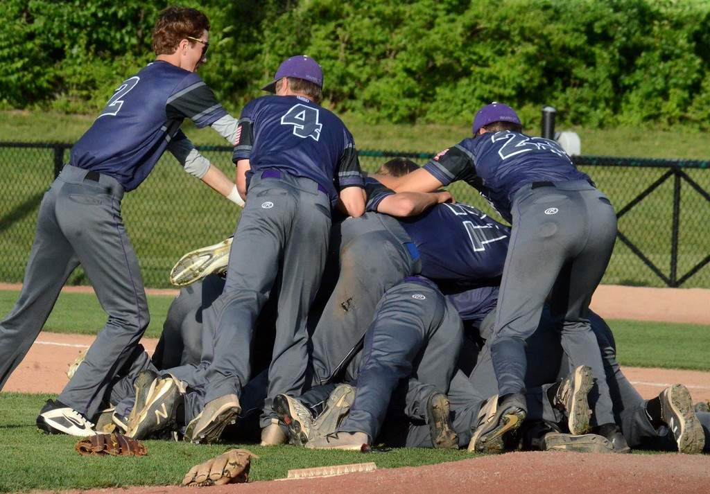 . Woodhaven defeated Birmingham Brother Rice, 7-3, in Thursday\'s Division 1 baseball semifinal at Michigan State University. (Digital First Media photo gallery by Drew Ellis)