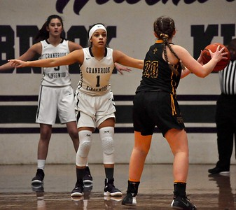 Bloomfield Hills Cranbrook Kingswood hosted Madison Heights Bishop Foley for a Catholic League game on Wednesday, Jan. 9, 2019. (DAN FENNER - For Digital First Media)