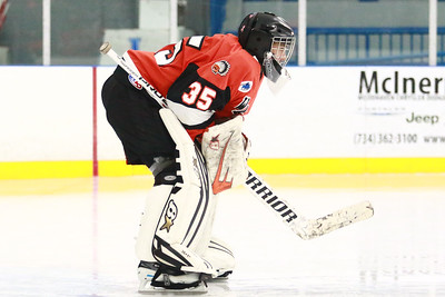 The MIHL Showcase game between Birmingham Brother Rice and Detroit Country Day featured some great goaltending with Sam Evola and Mateo Vitale knocking away a combined forty-four of forty-seven shots but in the end, the Warriors stepped off of the ice with a  2-1 victory Saturday February 2, 2019 in Trenton. (Oakland Press photo by Timothy Arrick)