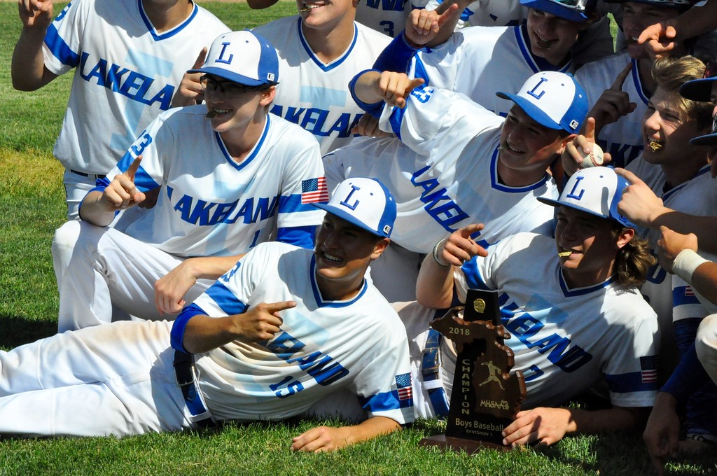 . Lakeland, West Bloomfield, Walled Lake Central and Walled Lake Northern high schools competed in a Division 1 baseball district grouping on Saturday, June 2, 2018. (Photo gallery by Dan Fenner/The Oakland Press)