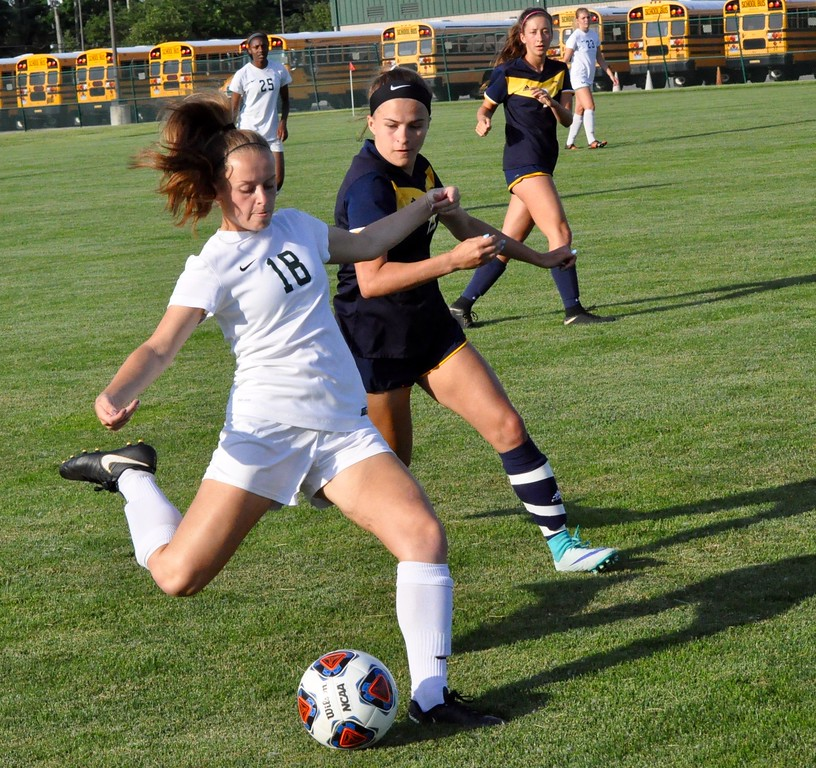 . Novi defeated Saline 4-0 in a Division 1 girls soccer regional final on Thursday, June 7, 2018. (Photo gallery by Dan Fenner/The Oakland Press)
