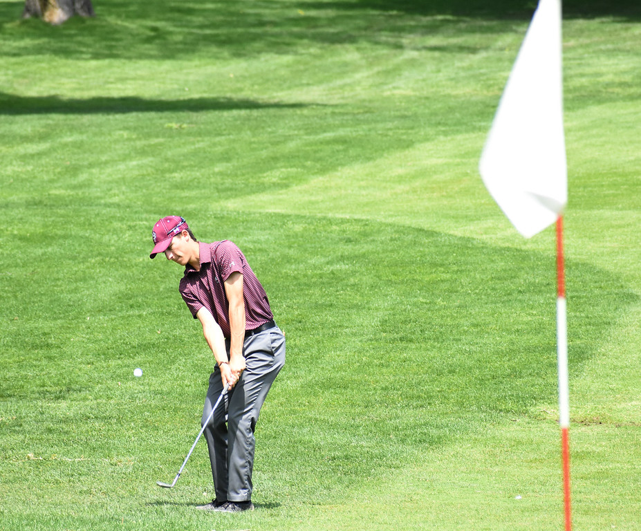 . Birmingham Seaholm\'s Henry Scavone chips up onto the 14th green Wednesday at the Oakland County Golf Tournament at the Pontiac Country Club. (The Oakland Press photo by Jason Schmitt)