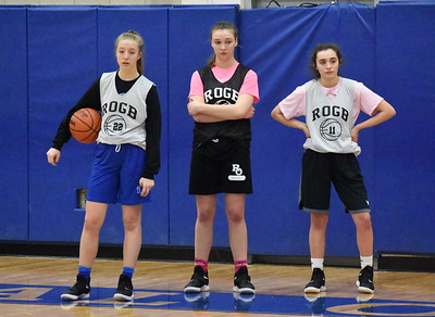 The Royal Oak girls basketball team is 12-0 on the season - its best start in school history - and is 31-3 over the past two seasons. (Digital First Media photo by Jason Schmitt)