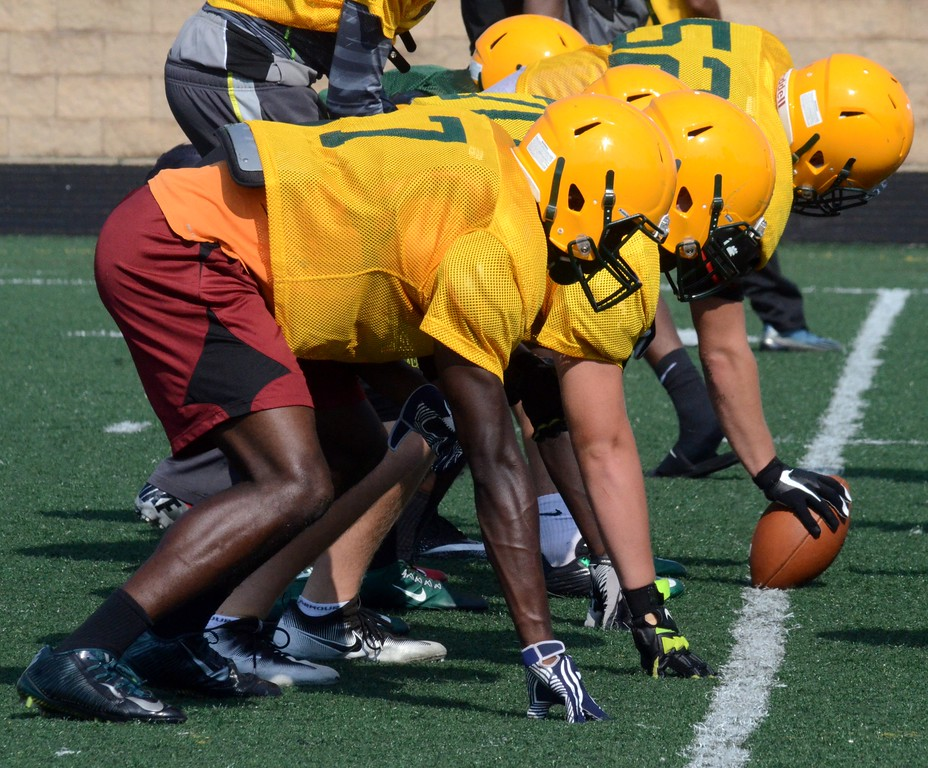 . Farmington Hills Harrison is coming off a 5-4 record in the 2016 season. The Hawks missed the playoffs for the first time since 2008. (Oakland Press photo by Drew Ellis)