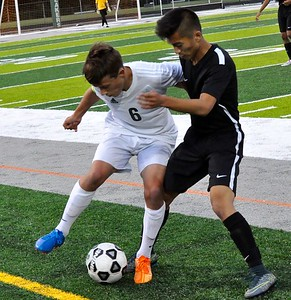 West Bloomfield hosted North Farmington for an Oakland Activities Association soccer game on Wednesday, Sept. 6, 2017. (Photo gallery by Dan Fenner/The Oakland Press)