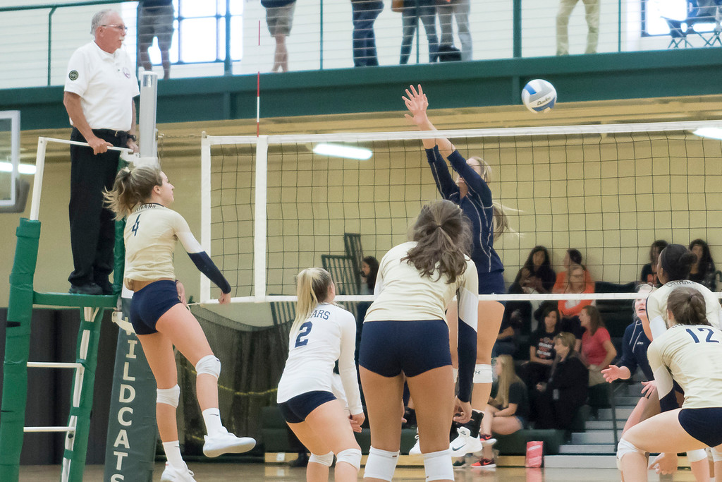 . Check out our gallery of Oakland County teams that participated in Saturday\'s Novi Volleyball Invitational! (Oakland Press Photo by Timothy Arrick)
