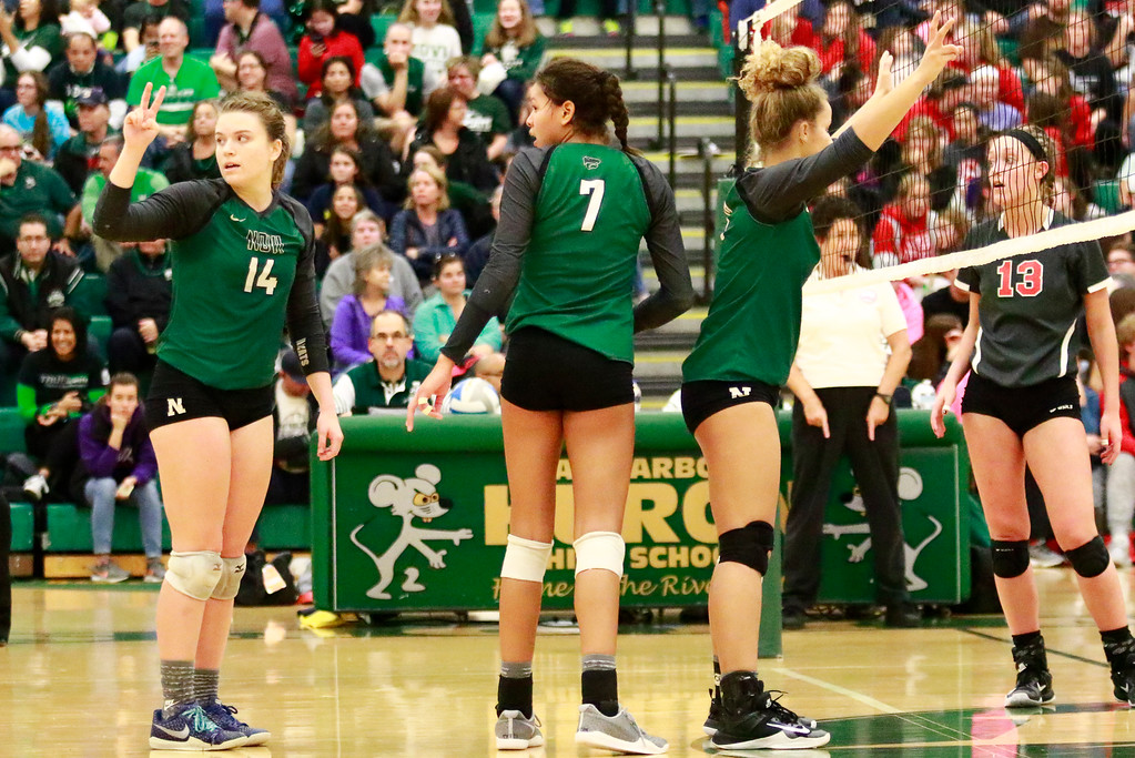 . The Novi Wildcats are headed back to the Final Four as they took home a straight set victory 25-10, 25-18, and 25-17 over Bedford Tuesday night in Ann Arbor. (Oakland Press photo by Timothy Arrick)
