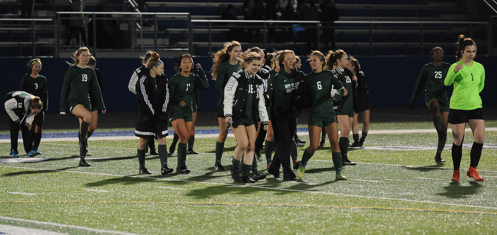 . The Novi Wildcats defeated the Rochester Falcons 3-1 in the match played on Friday April 13, 2018 at Rochester HS.  (Oakland Press Photo by Ken Swart)