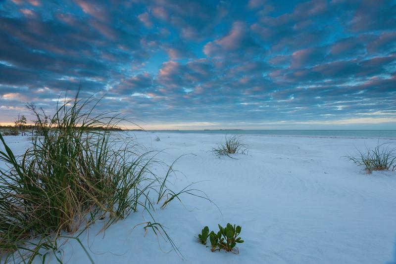 Dunegrass and Gulf