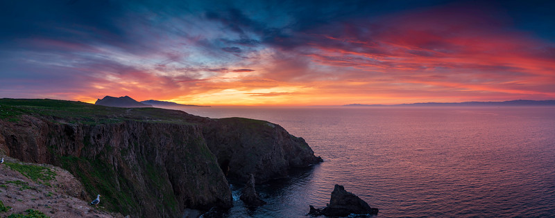 Channel Islands Panorama