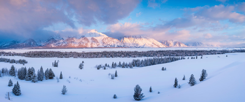 Wintery Blush