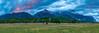 Park Pastures