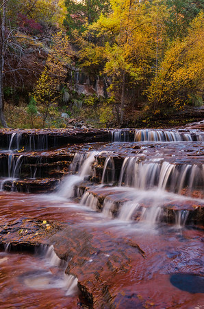 Falls in Zion