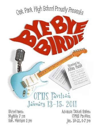 Bye Bye Birdie 2011