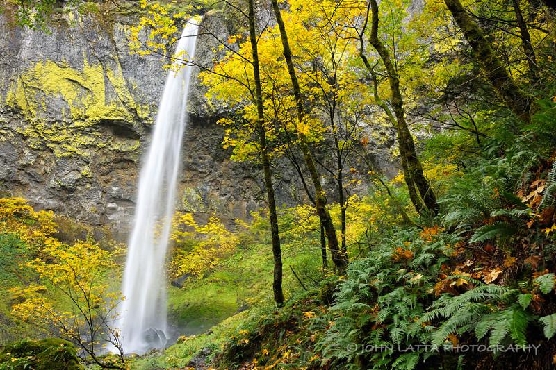 Elowah Falls Color