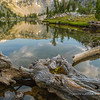 Reflection in Swamp Lake