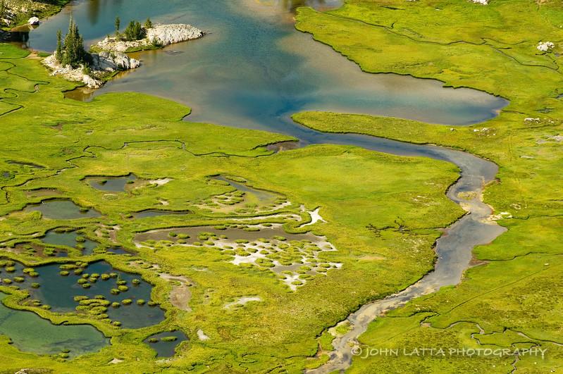 Swamp Lake Detail