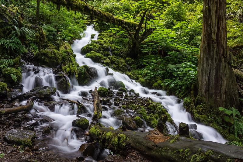 Wahkeena Creek