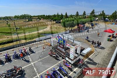 ALF 79017