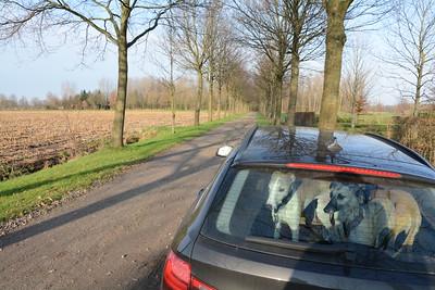 2015 12 20 Sint-Anna (Hamme)