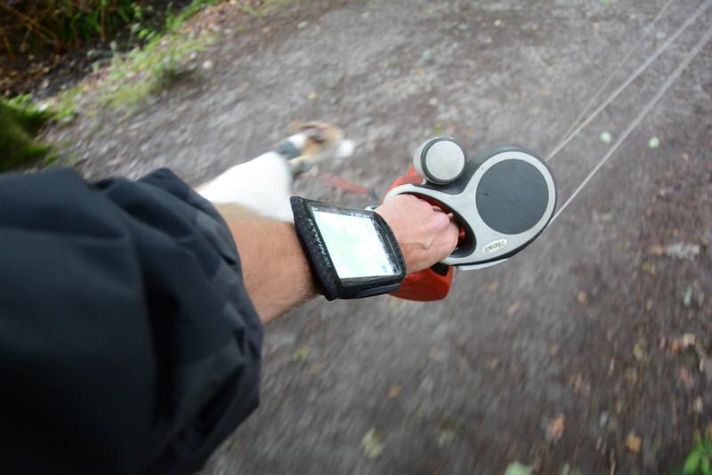 SmartPhone in holder