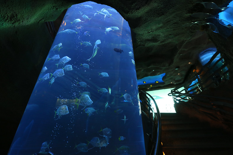 Canadian Reception & Dinner at the Downtown Aquarium