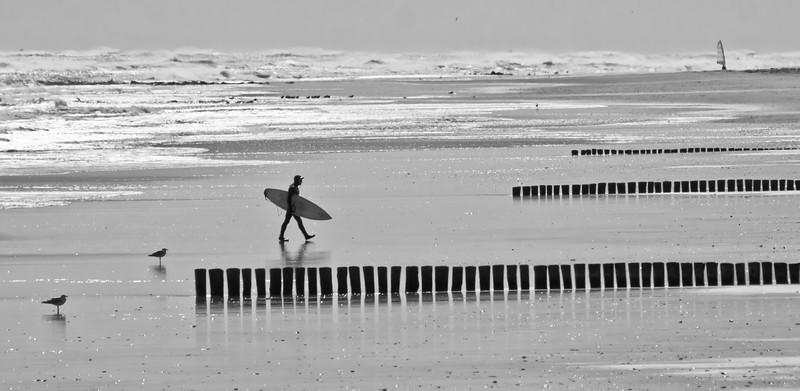 Jersey Surf