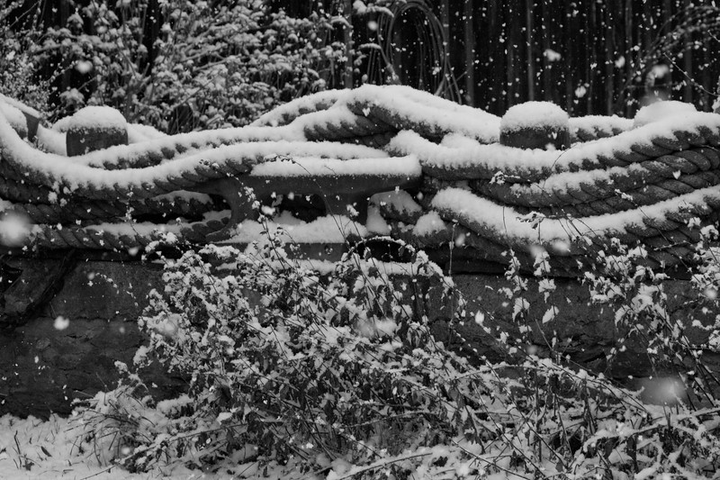 Ship hawser, snow fall, black and white