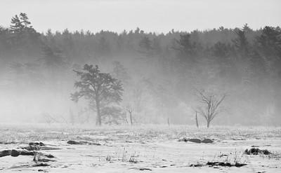Winnegance Marsh In Snow Fog, Phippsburg Maine