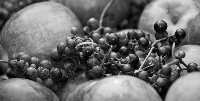 apples and grapes at harvest, a study in black and white
