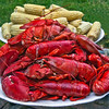 red cooked Lobster bake with golden yellow corn on the cob, Fourth Of July, Phippsburg Maine, classic Maine summer food, iconic