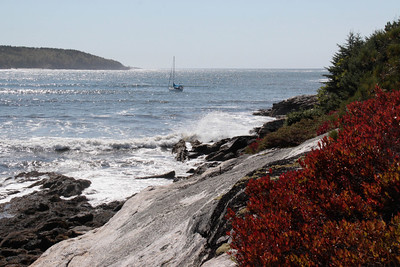 southern view across the gray ledge of Greyledge, huckleberries, Hermit Island to the left