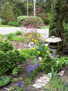 precisely pruned trees and shrubs give structure to extensive perennial gardens