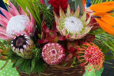 Scenes from the Kula Farmers Market, Maui, February 2014. This farmers market is regarded as the best on the island.. Pincushion proteas have long, thin filament type petals.