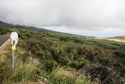 """This is the Piiliani Highway on """"the backside"""" of the road to Hanna, south eastern Maui. The road deteriorates from here, eventually turning into dirt. There are lots of cattle, which wander in the road at will. There are currently, two wind fields on Maui. Like many places, it energy source remailns controversial."""