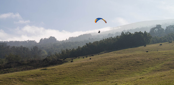 Paragliding in Kula Maui from the side of the Haleakala volcano