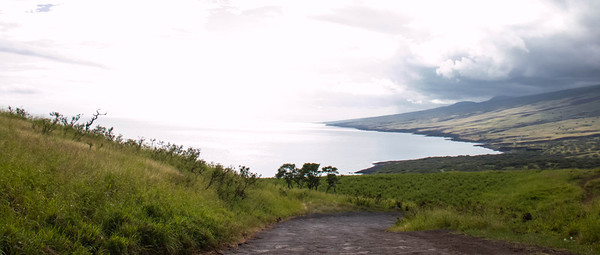 The vast landscapes in Maui are breathtaking.