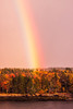 Rainbow over Bailey Point, Phippsburg Maine with fall foliage, stunning autumn leaves, Maine scenic