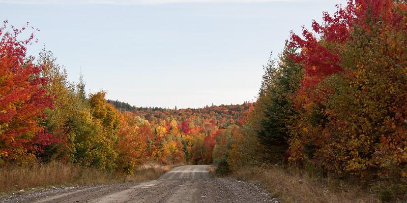 On the 20 Mile Road north of Rockwood, Maine headed toward Jackman, fall foliage, September