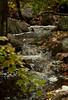 North Creek Phippsburg Maine rushing water