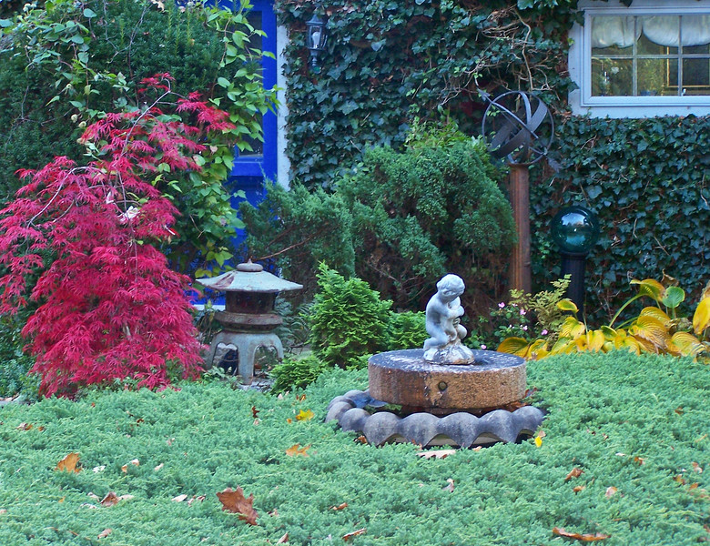 This photo was taken in my driveway looking toward the kitchen door (left). The colors have not been enhanced. This is how wild it actually is! Photo taken in September, 2009. Today, 2012, the only difference is that the Japanese maple on the left is bigger