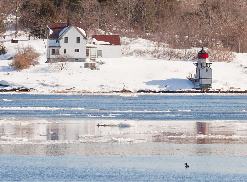 Squirrel Point Lighthouse in snow, Arrowsic Maine as seen from Phippsburg Maine on Parker Head Road across the Kennebec River. This would make a pretty holiday card. The bird in the right foreground is a Red Breasted Merganser.