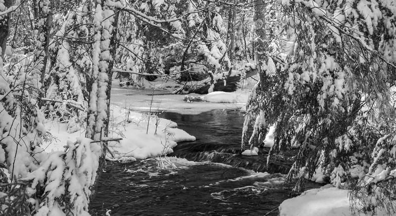 Winter storm, stream in Phippsburg Maine January