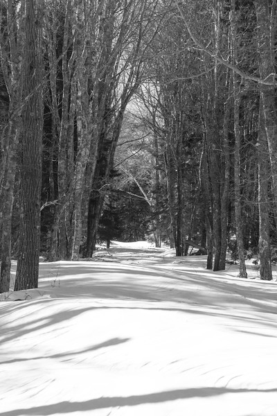 path to Fort Baldwin in winter snow, Phippsburg Maine in February, winter scene