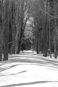 path to Fort Baldwin in winter snow, Phippsburg Maine in February, winter scene